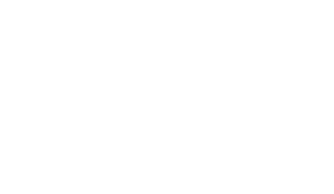 Have Fun Adventure!